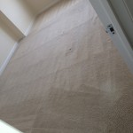Redwood-City-Carpet-Clean-room