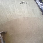 Redwood-City-Carpet-Cleaning-Company