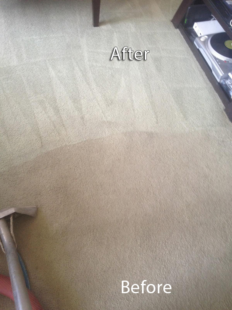 Carpet Cleaning | Redwood City Carpet