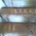 Redwood-City-Stairs-Carpet-Cleaning