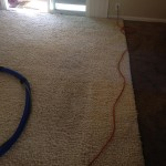 Redwood-City-Traffic-Area-carpet-cleaners