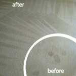 Redwood-City-Wine-Stain-Carpet-Cleaning