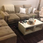 Salon-Upholstery-Cleaning-Redwood-City